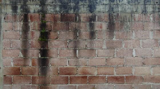 wall-3493453_960_720