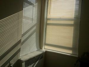 sunlight-668257_960_720